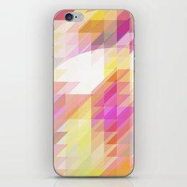 Cirkles iPhone Skin