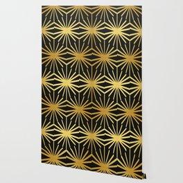 Radiated Turtoise Pattern (imminent extinction) Wallpaper