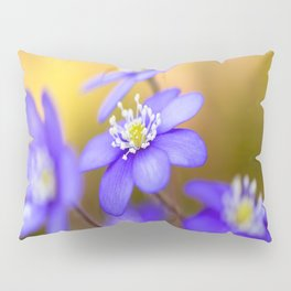 Spring Wildflowers, Beautiful Hepatica in the forest on a sunny and colorful background Pillow Sham