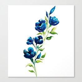 Turquoises Canvas Print
