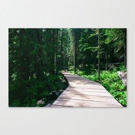 Brainerd Lake, Colorado Canvas Print