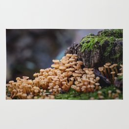 Mushroom Forest Rug