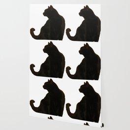 Halloween Black Cat Silhouette  Wallpaper