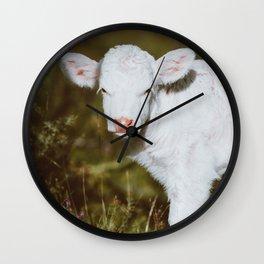 White Calf (Color) Wall Clock