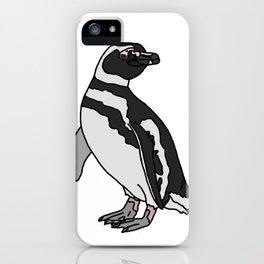 Magellanic Penguin iPhone Case