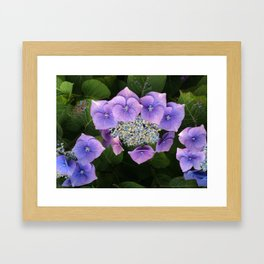 Purple Posy Perfection Framed Art Print