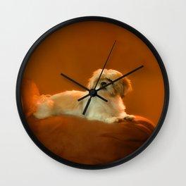 Shih Tzu Wall Clock