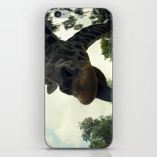 Giraffes are Silly. iPhone & iPod Skin