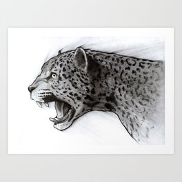 Jaguar Charcoal Art Print