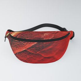 Autumn Abstract Fanny Pack