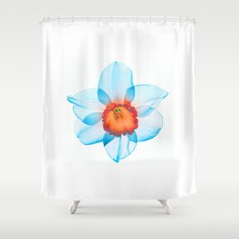 narcissus poeticus (feeling turquoise) Shower Curtain