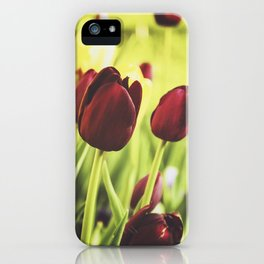 When Spring Was Here iPhone Case