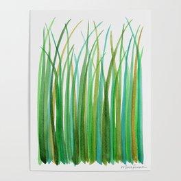 Green Grasses Poster