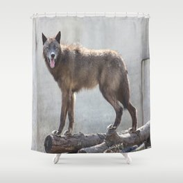 Queen of the logs Shower Curtain