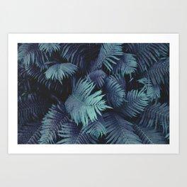 Farn 01 Art Print