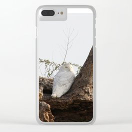 Kentucky and the Snow Owl Clear iPhone Case