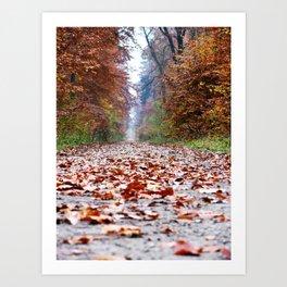 Walking In An Autumn Wonderland Art Print