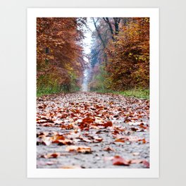 Walking In An Autumn Wonderland Art Print