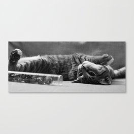 Kitty is Less Than Three Dice Canvas Print