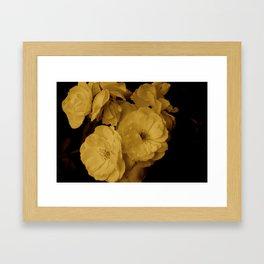 Sepia Rose Framed Art Print