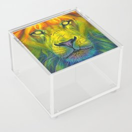 Pride Rising Acrylic Box