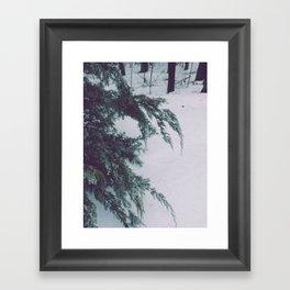 soft fallen. Framed Art Print