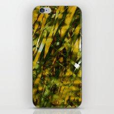 Windy Summer iPhone & iPod Skin