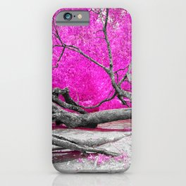 Dried Tree iPhone Case