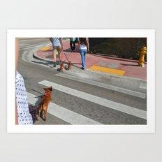 Running Dachshund  Art Print