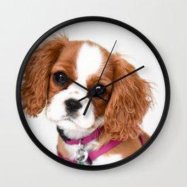 Cavalier King Charles Puppy Girl Wall Clock