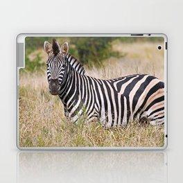 Zebra in the grass - Africa wildlife Laptop & iPad Skin