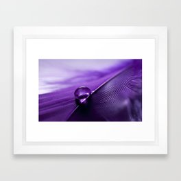 Delicate Framed Art Print