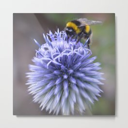 Save Our Bees Metal Print