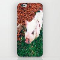 piglet iPhone & iPod Skins featuring Piglet {Instagram} by JJBegonia