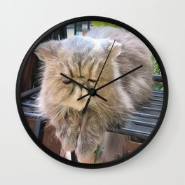 also kitty loves the sunshine Wall Clock