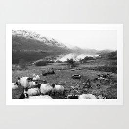 Sheepy Art Print