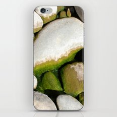 Mossy Mossy iPhone & iPod Skin