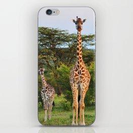Giraffe Widlife Photography #society6 #home #decor iPhone Skin