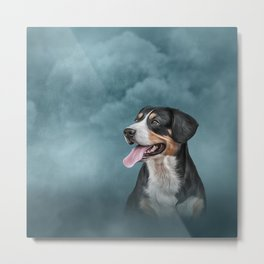 Drawing Appenzell Mountain Dog Metal Print