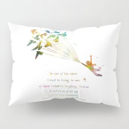In one of the stars Pillow Sham