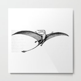 Pterodactyl Metal Print