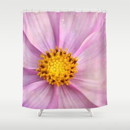 Pink Cosmo Shower Curtain