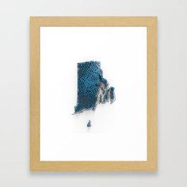 RI-PD-3D Framed Art Print