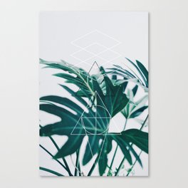 Botanic geometry Canvas Print