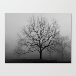 TREE in the MIST II Canvas Print