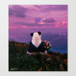 it will end in tears. Canvas Print