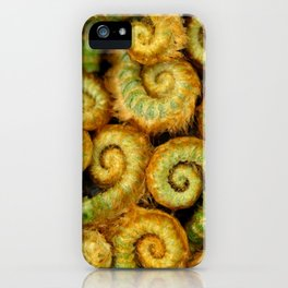 Ferns In The Woodland Grove... iPhone Case
