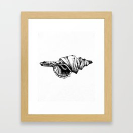 Shell Sketch Framed Art Print