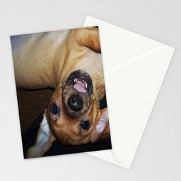Puppy Palooza Stationery Cards