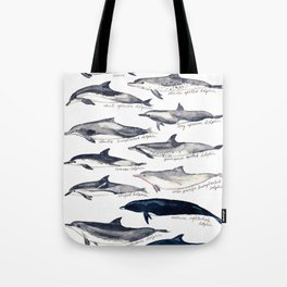 Dolphins of the World Illustration Tote Bag